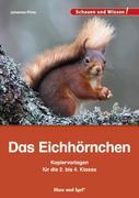 Das Eichhörnchen - Kopiervorlagen für die 2. bis 4. Klasse