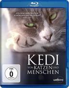 Kedi - Von Katzen und Menschen BD