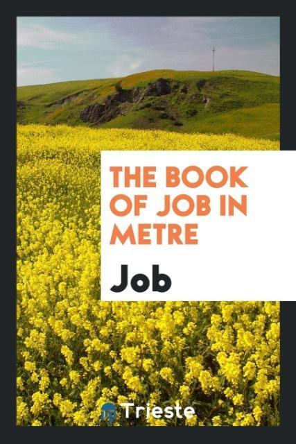 The Book of Job in Metre als Taschenbuch von Job