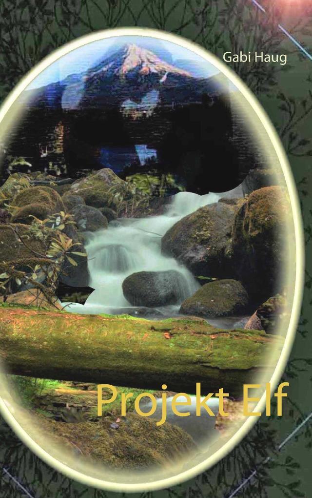 Projekt Elf als Buch