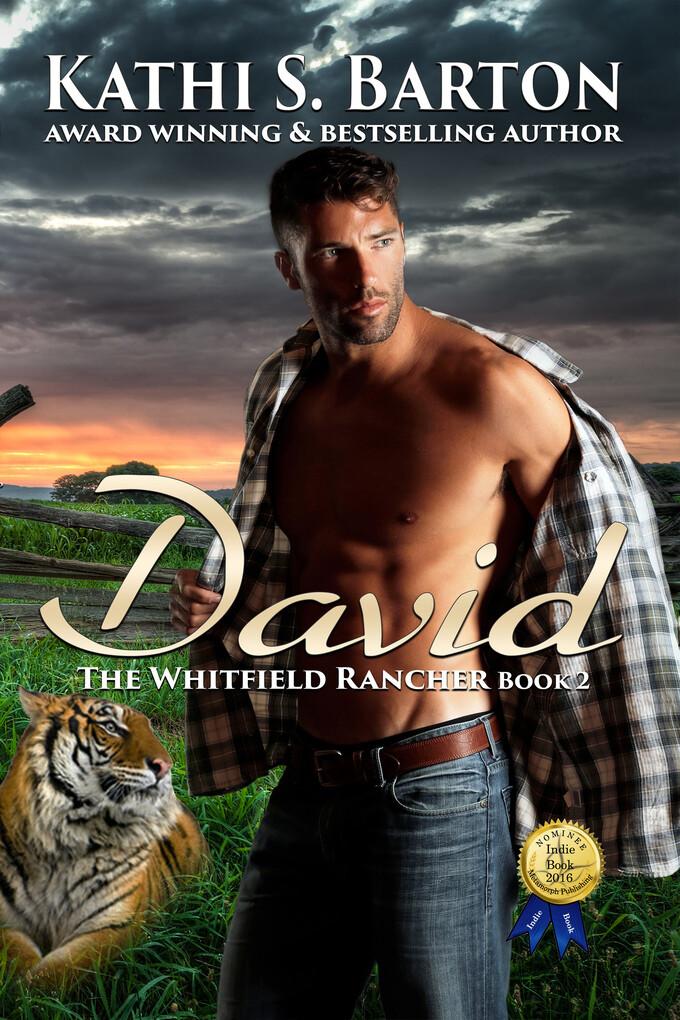 David als eBook Download von Kathi S Barton