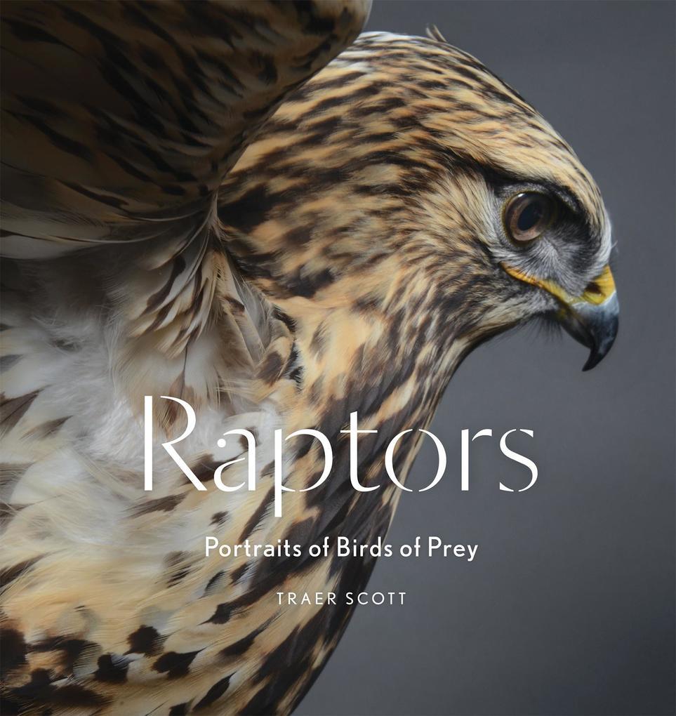 Raptors als eBook Download von Traer Scott