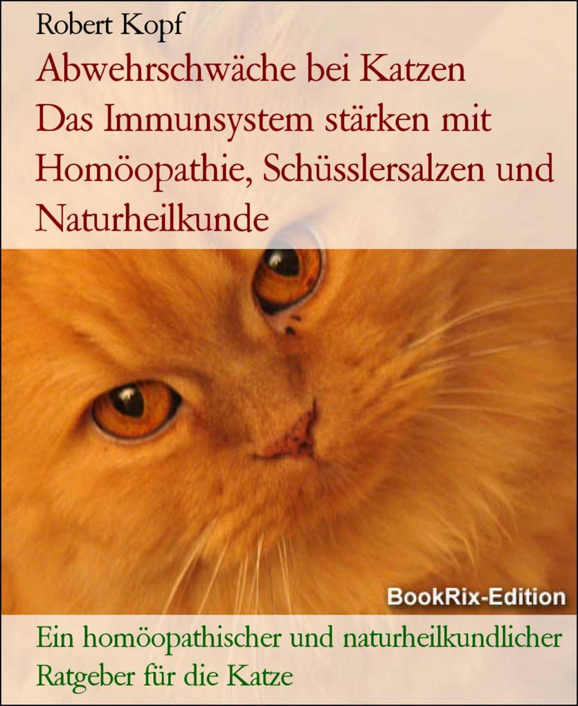 Abwehrschwäche bei Katzen - Das Immunsystem stä...