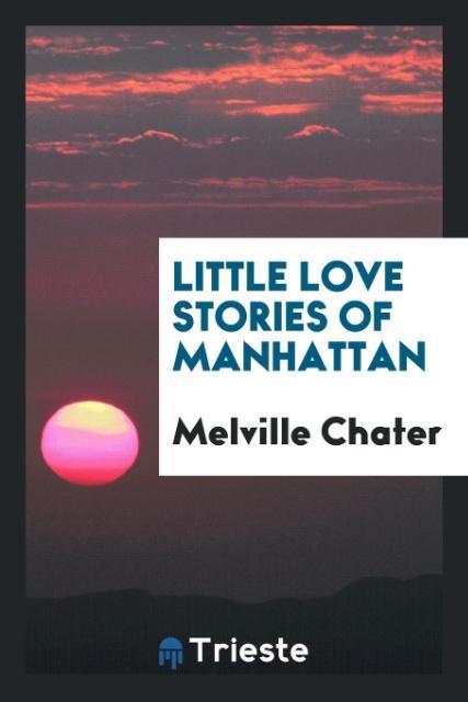 Little Love Stories of Manhattan als Taschenbuc...