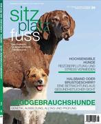 StizPlatzFuss, Ausgabe 29
