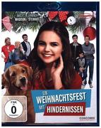 Ein Weihnachtsfest mit Hindernissen (ehemals Holiday Joy / Different Folks)