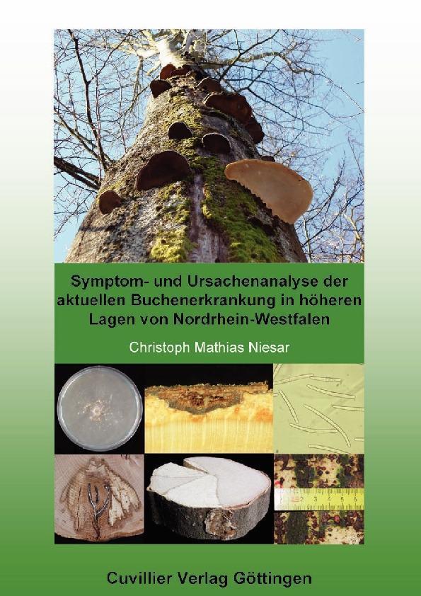 Symptom- und Ursachenanalyse der aktuellen Buchenerkrankung in höheren Lagen von Nordrhein-Westfalen als eBook Download von