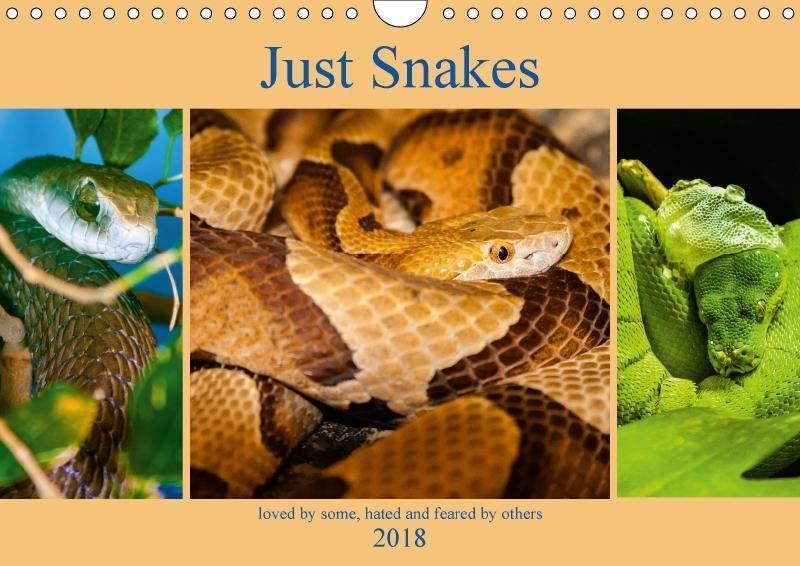 Just Snakes (Wall Calendar 2018 DIN A4 Landscape)