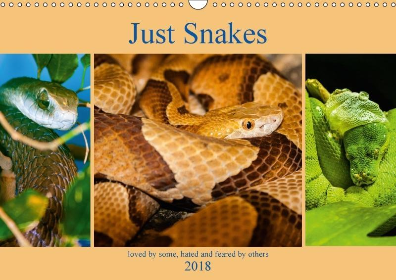 Just Snakes (Wall Calendar 2018 DIN A3 Landscape)