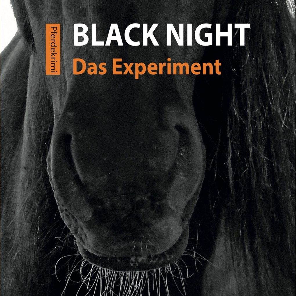 Black Night - Das Experiment als Hörbuch Download