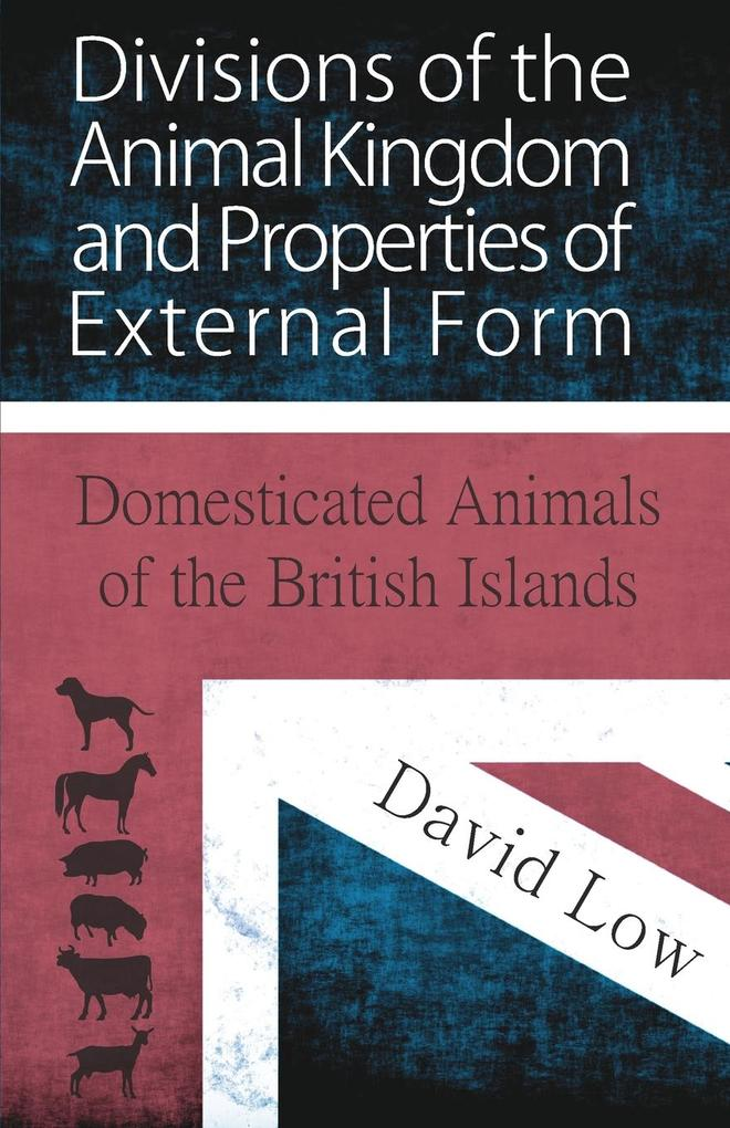Divisions of the Animal Kingdom and Properties ...