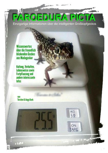PAROEDURA PICTA - Großkopfgeckos als Buch