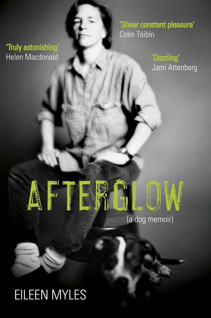 Afterglow als eBook Download von Eileen Myles