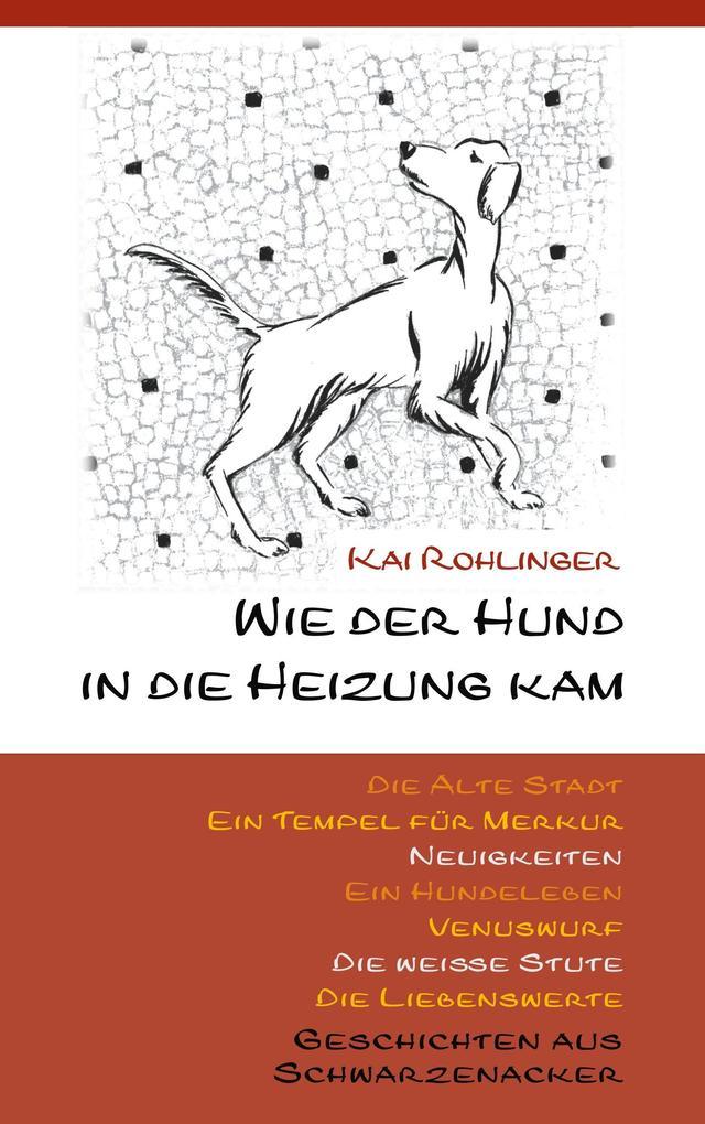 Wie der Hund in die Heizung kam als Buch