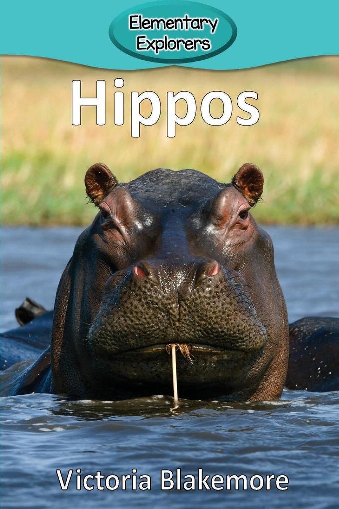 Hippos als Taschenbuch von Victoria Blakemore