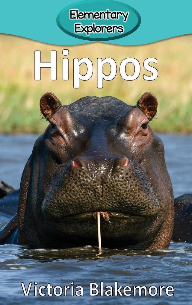Hippos als Buch von Victoria Blakemore