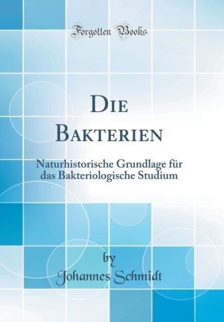 Die Bakterien als Buch von Johannes Schmidt