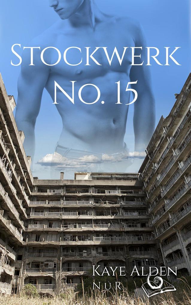 Stockwerk No 15 als eBook epub