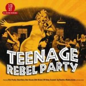 Teenage Rebel Party