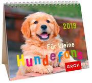 Für kleine Hundefans 2019
