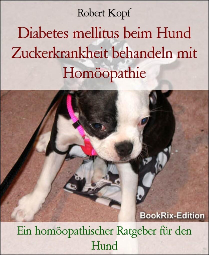 Diabetes mellitus beim Hund Zuckerkrankheit beh...