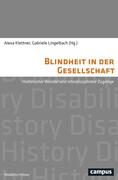 Blindheit in der Gesellschaft