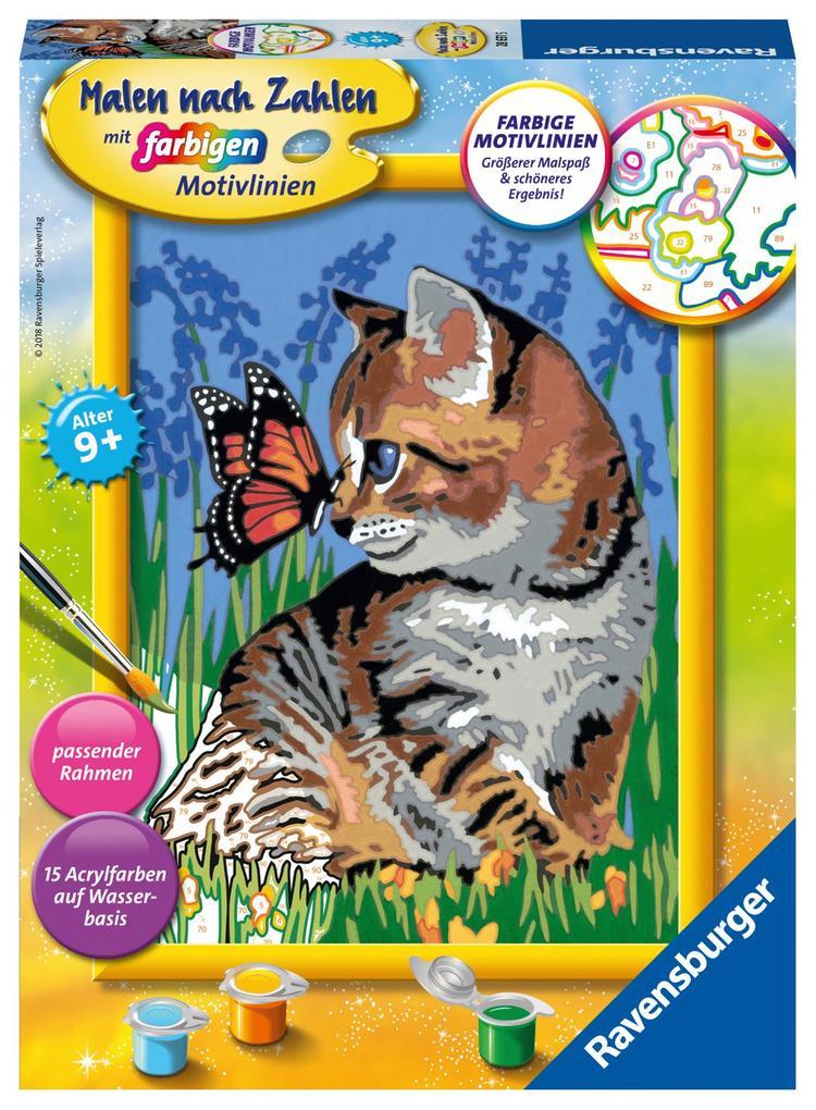 Katze Mit Schmetterling Malen Nach Zahlen Serie D