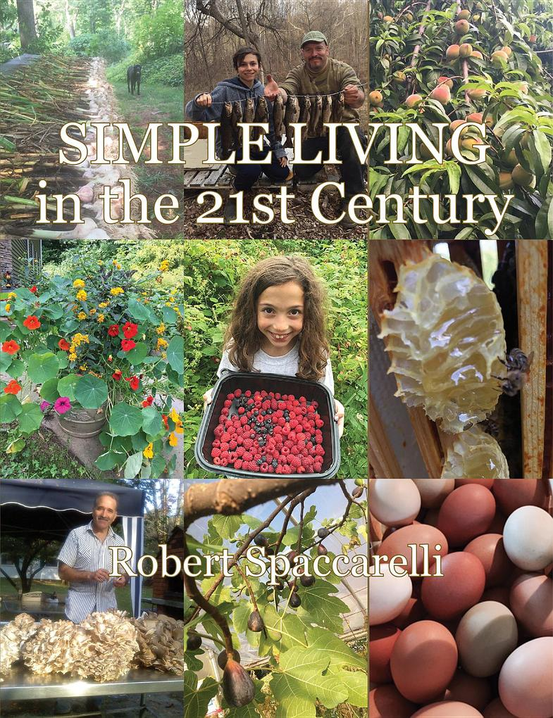 Simple Living in the 21st Century als eBook Dow...