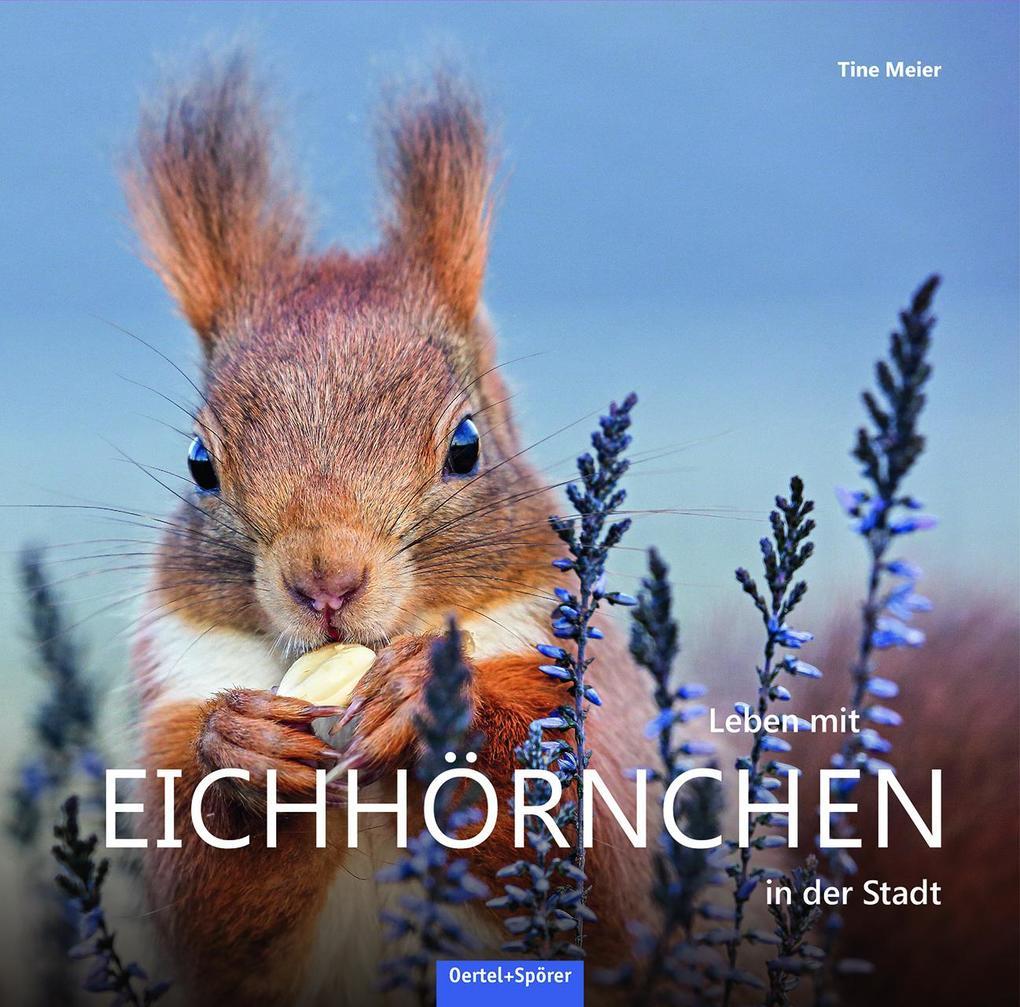 Leben mit Eichhörnchen in der Stadt als Buch