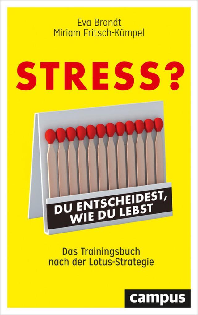 Stress? Du entscheidest, wie du lebst als eBook epub