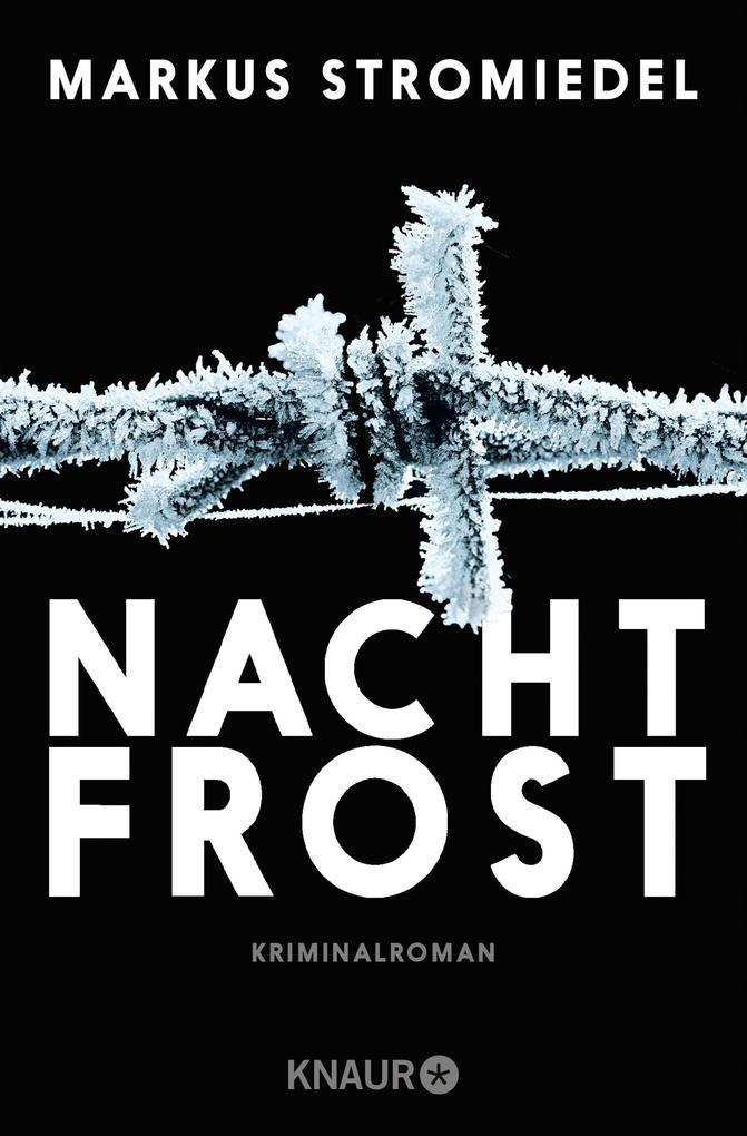 Nachtfrost als eBook