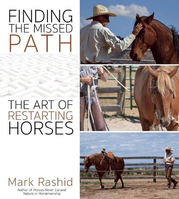 Finding the Missed Path als eBook Download von ...