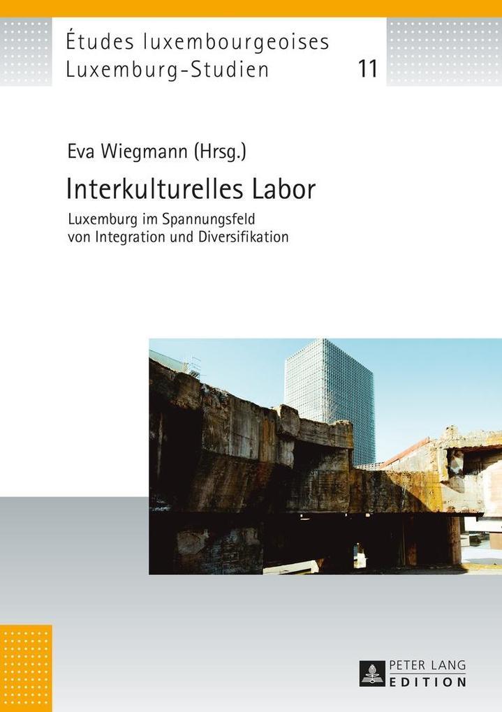 Interkulturelles Labor als eBook Download von