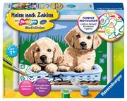 Süße Hundewelpen Malen nach Zahlen Serie E