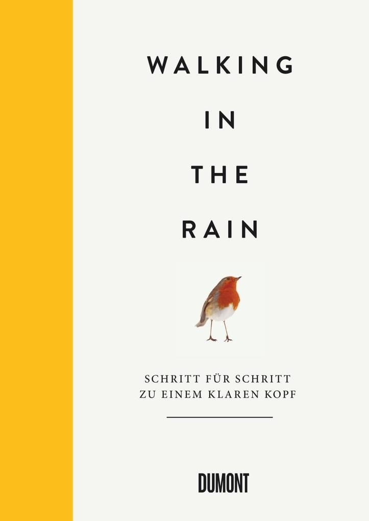 Walking in the Rain als Buch
