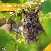 Eulen 2019 Broschürenkalender