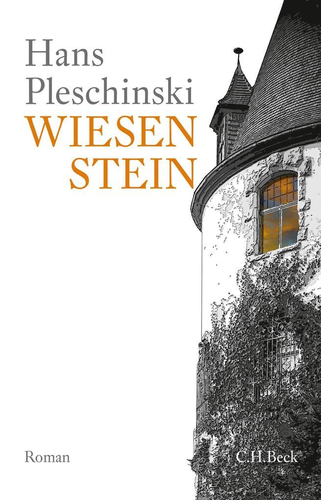 Wiesenstein als eBook