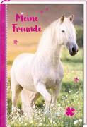 Freundebuch - Pferdefreunde - Meine Freunde. Schimmel im Sonnenuntergang