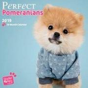 Perfect Pomeranians - Pomeranian/Zwergspitz 2019 18-Monatskalender
