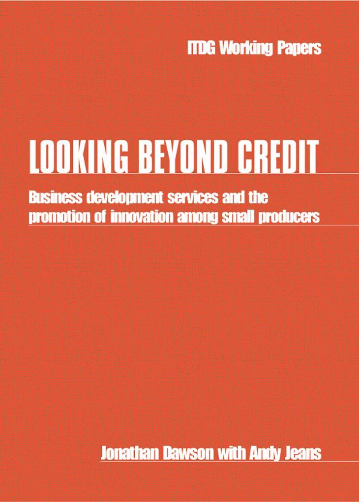 Looking Beyond Credit als eBook Download von Jo...