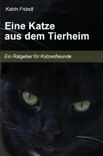 Eine Katze aus dem Tierheim als Buch (kartoniert)