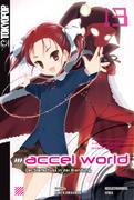 Accel World - Novel 13