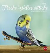 Freche Wellensittiche 2019. Postkartenkalender