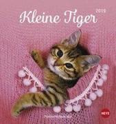 Katzen. Kleine Tiger 2019. Postkartenkalender