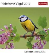 Heimische Vögel 2019