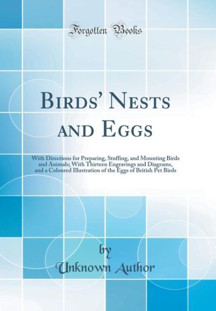 Birds´ Nests and Eggs als Buch von Unknown Author