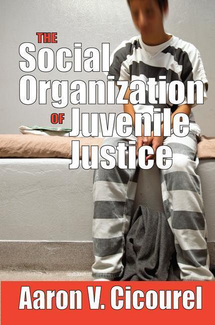 The Social Organization of Juvenile Justice als Buch (gebunden)