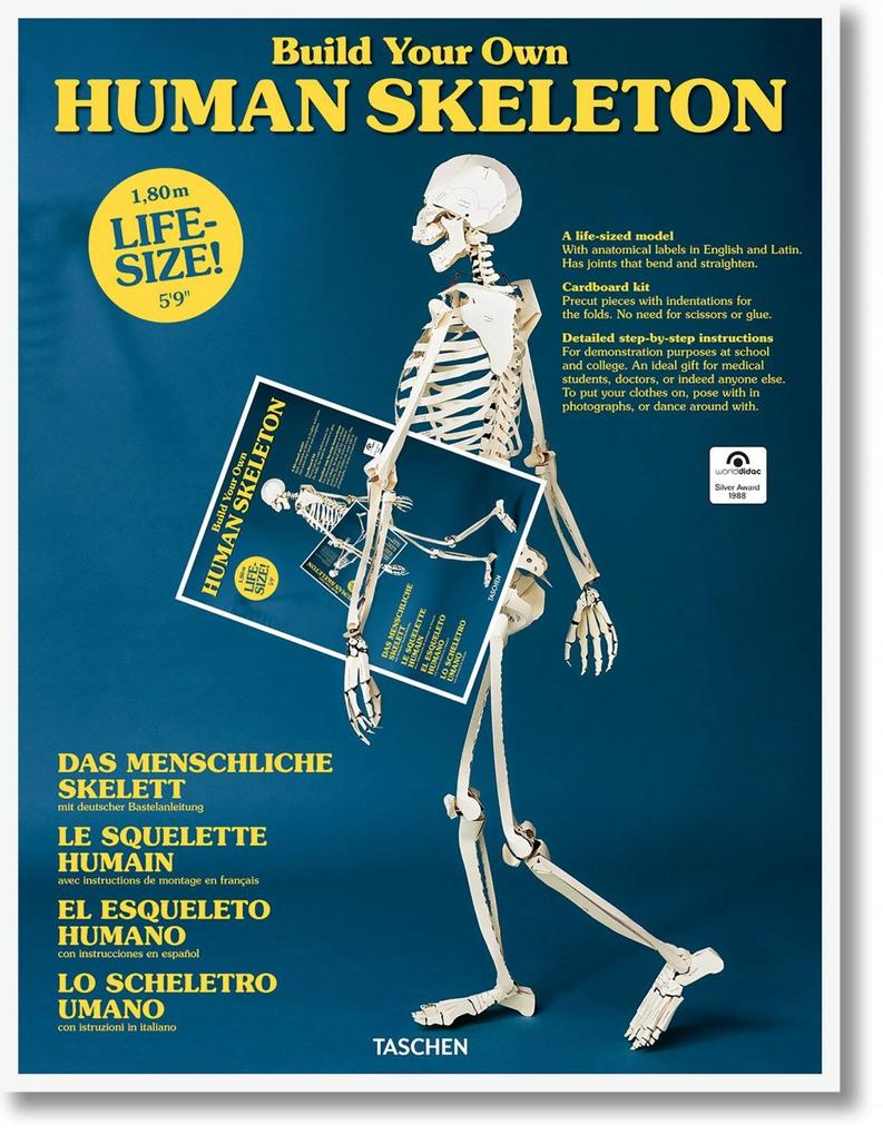 Build Your Own Human Skeleton Life Size Buch