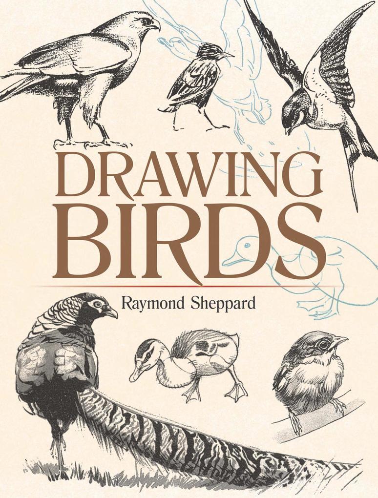 Drawing Birds als eBook Download von Raymond Sh...