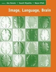 Image, Language, Brain als eBook Download von A...
